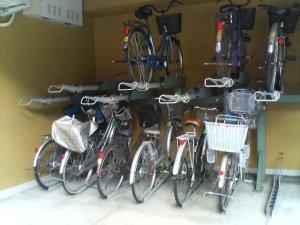 Japan_Bike_Park.jpg